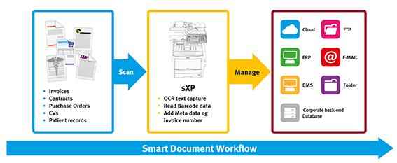 MC800 Workflow